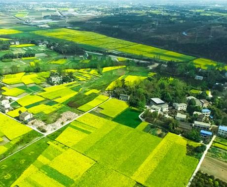 全面深化农业农村改革 推进创新驱动绿色发展