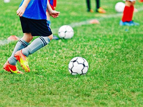 姚夏、魏群来了 兴城足球俱乐部与雷迪波尔跨界签约